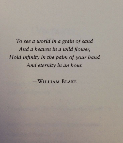 Heaven, Flower, and Infinity: To see a world in a grain of sand  And a heaven in a wild flower,  Hold infinity in the palm of your hand  And eternity in an hour.  -WILLIAM BLAKE