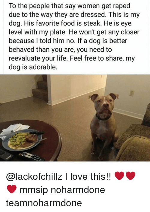 Feeling Free: To the people that say women get raped  due to the way they are dressed. This is my  dog. His favorite food is steak. He is eye  level with my plate. He won't get any closer  because I told him no. If a dog is better  behaved than you are, you need to  reevaluate your life. Feel free to share, my  dog is adorable. @lackofchillz I love this!! ❤❤❤ mmsip noharmdone teamnoharmdone