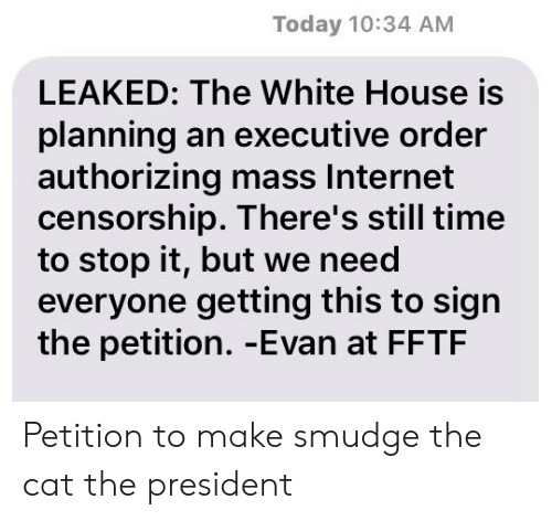 Internet, Reddit, and White House: Today 10:34 AM  LEAKED: The White House is  planning an executive order  authorizing mass Internet  censorship. There's still time  to stop it, but we need  everyone getting this to sign  the petition. -Evan at FFTF Petition to make smudge the cat the president