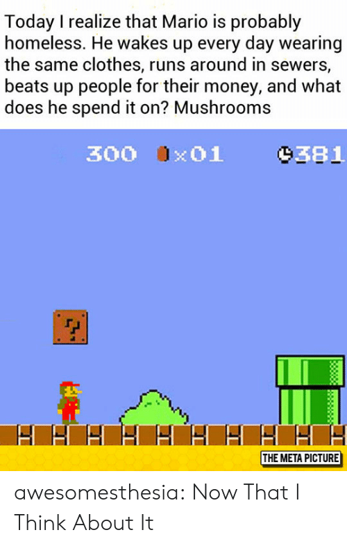 Clothes, Homeless, and Money: Today I realize that Mario is probably  homeless. He wakes up every day wearing  the same clothes, runs around in sewers,  beats up people for their money, and what  does he spend it on? Mushrooms  9381  300 x01  THE META PICTURE awesomesthesia:  Now That I Think About It