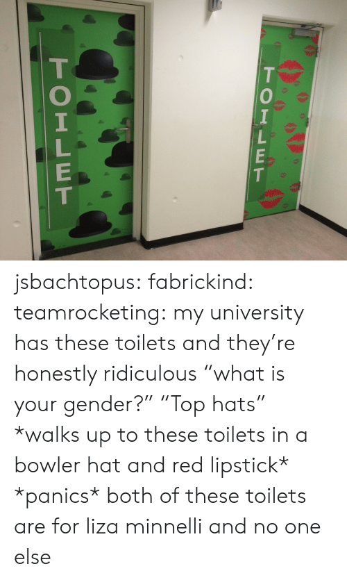 """Tumblr, Blog, and Http: TOILET  TOILET jsbachtopus: fabrickind:   teamrocketing:  my university has these toilets and they're honestly ridiculous  """"what is your gender?"""" """"Top hats""""   *walks up to these toilets in a bowler hat and red lipstick* *panics*   both of these toilets are for liza minnelli and no one else"""