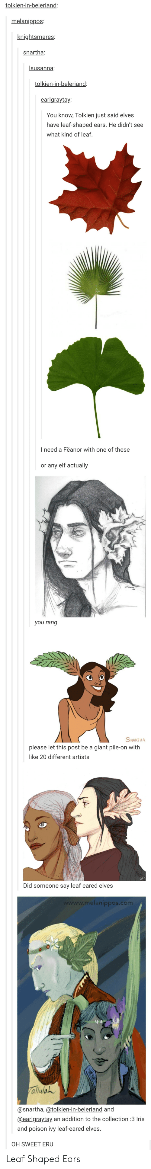 pile on: tolkien-in-beleriand:  melanippos:  knightsmares:  snartha:  Isusanna  tolkien-in-beleriand:  earlgraytay:  You know, Tolkien just said elves  have leaf-shaped ears. He didn't see  what kind of leaf.  I need a Feanor with one of these  or any elf actually  LsusAne  you rang  SNARTHA  please let this post be a giant pile-on with  like 20 different artists  Did someone say leaf eared elves  wwww.melanippos.com  alluWah  @snartha, @tolkien-in-beleriand and  @earlgraytay an addition to the collection:3 Iris  and poison ivy leaf-eared elves  OH SWEET ERU Leaf Shaped Ears