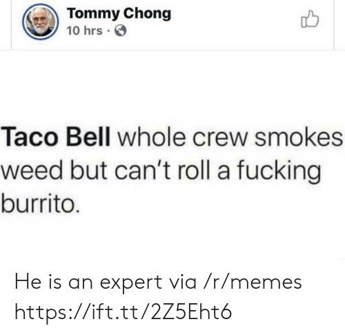Fucking, Memes, and Taco Bell: Tommy Chong  10 hrs  Taco Bell whole crew smokes  weed but can't roll a fucking  burrito. He is an expert via /r/memes https://ift.tt/2Z5Eht6