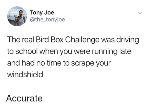 Driving, School, and The Real: Tony Joe  @the_tonyjoe  The real Bird Box Challenge was driving  to school when you were running late  and had no time to scrape your  windshield Accurate