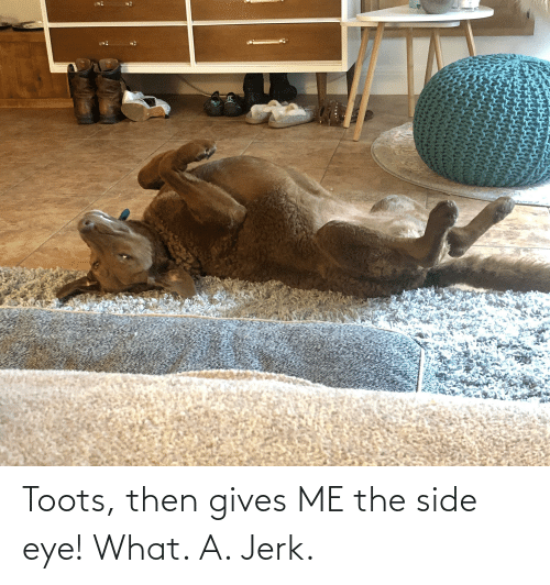 Toots: Toots, then gives ME the side eye! What. A. Jerk.