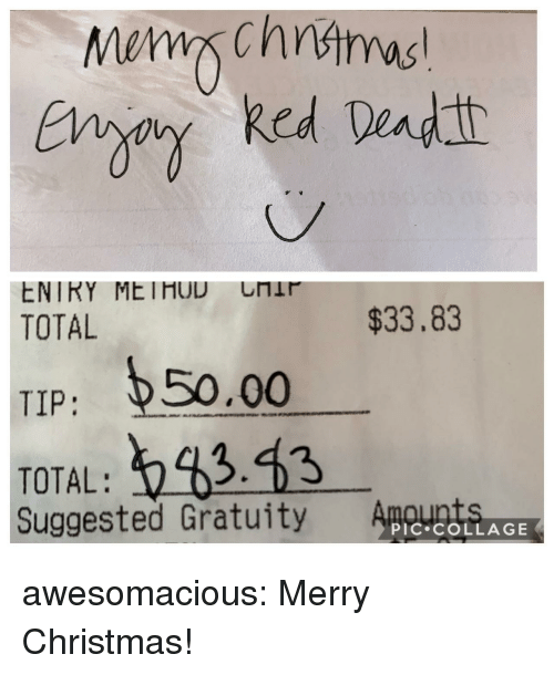 Christmas, Tumblr, and Blog: TOTAL  $33.83  TIP: 50.00  TOTAL: 343  Suggested Gratuity ACtERLAGE awesomacious:  Merry Christmas!