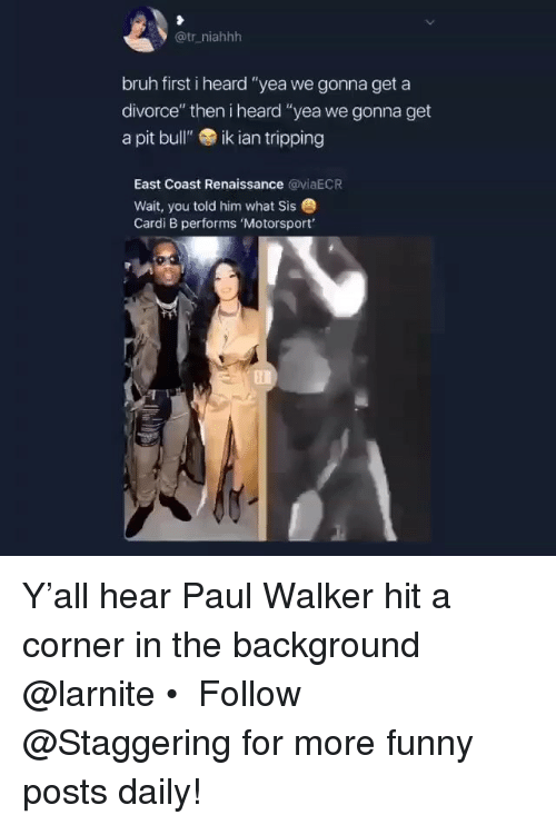 """Bruh, Funny, and Paul Walker: @tr_niahhh  bruh first i heard """"yea we gonna get a  divorce"""" then i heard """"yea we gonna get  a pit bull""""ik ian tripping  East Coast Renaissance @yiaECR  Wait, you told him what Sis  Cardi B performs 'Motorsport' Y'all hear Paul Walker hit a corner in the background @larnite • ➫➫➫ Follow @Staggering for more funny posts daily!"""