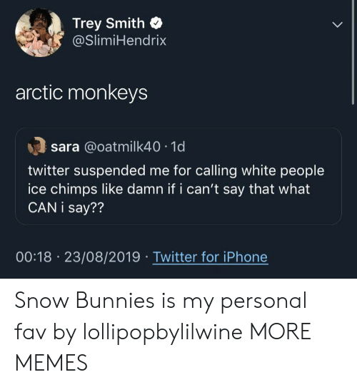 Bunnies, Dank, and Iphone: Trey Smith  @SlimiHendrix  arctic monkeys  sara @oatmilk40 1d  twitter suspended me for calling white people  ice chimps like damn if i can't say that what  CAN i say??  00:18 23/08/2019 Twitter for iPhone Snow Bunnies is my personal fav by lollipopbylilwine MORE MEMES