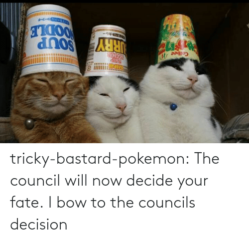 decision: tricky-bastard-pokemon:  The council will now decide your fate.   I bow to the councils decision