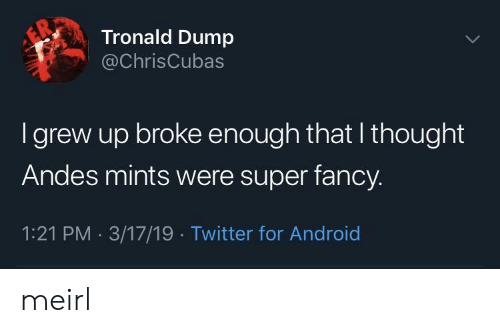 Android, Twitter, and Fancy: Tronald Dump  @ChrisCubas  I grew up broke enough that I thought  Andes mints were super fancy.  1:21 PM 3/17/19 Twitter for Android meirl