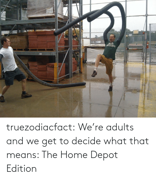Decide: truezodiacfact:  We're adults and we get to decide what that means: The Home Depot Edition