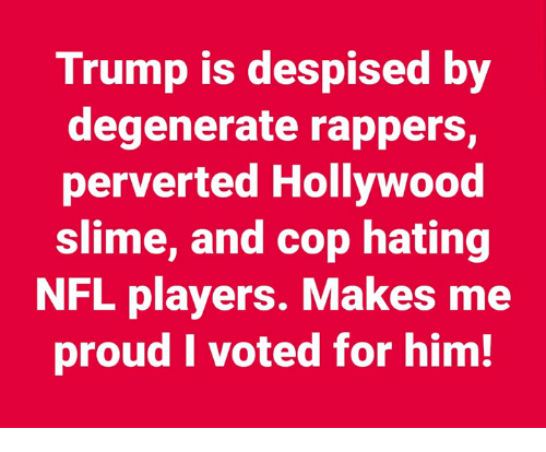Nfl, Trump, and Proud: Trump is despised by  degenerate rappers,  perverted Hollywood  slime, and cop hating  NFL players. Makes me  proud I voted for him