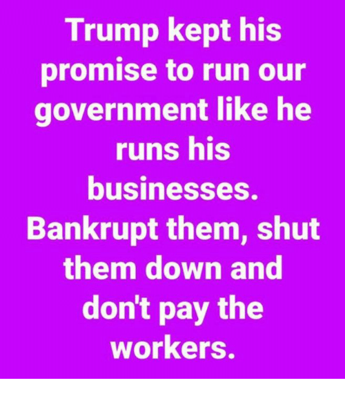 Run, Trump, and Government: Trump kept his  promise to run our  government like he  runs his  businesseS.  Bankrupt them, shut  them down and  don't pay the  workers.