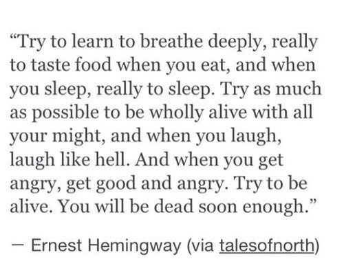 """You Sleep: """"Try to learn to breathe deeply, really  to taste food when you eat, and when  you sleep, really to sleep. Try as much  as possible to be wholly alive with all  your might, and when you laugh,  laugh like hell. And when you get  angry, get good and angry. Try to be  alive. You will be dead soon enough.""""  Ernest Hemingway (via talesofnorth)"""