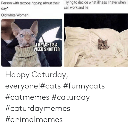 "Cats, Caturday, and I Bet: Trying to decide what llness I have when I  call work and lie  Person with tattoos: ""going about their  day  Old white Women:  I BET SHE'S A  WEED SNORTER Happy Caturday, everyone!#cats #funnycats #catmemes #caturday #caturdaymemes #animalmemes"