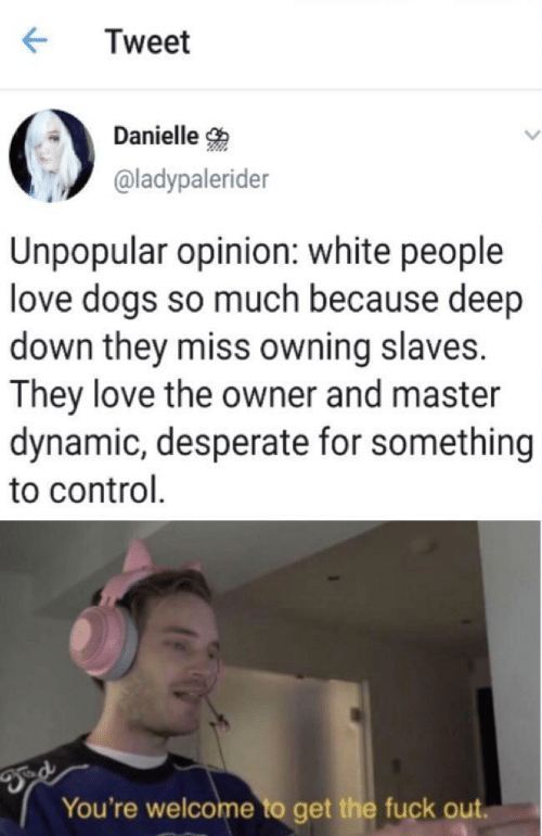 Get The Fuck Out: Tweet  Danielle  @ladypalerider  Unpopular opinion: white people  love dogs so much because deep  down they miss owning slaves.  They love the owner and master  dynamic, desperate for something  to control  You're welcome to get the fuck out.