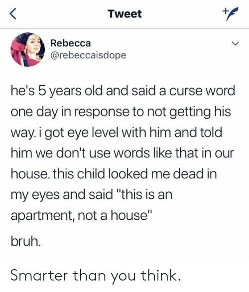 "In Response: Tweet  Rebecca  @rebeccaisdope  he's 5 years old and said a curse word  one day in response to not getting his  way.i got eye level with him and told  him we don't use words like that in our  house. this child looked me dead in  my eyes and said ""this is an  apartment, not a house""  bruh. Smarter than you think."