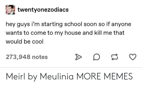 hey guys: twentyonezodiacs  hey guys i'm starting school soon so if anyone  wants to come to my house and kill me that  would be cool  273,948 notes Meirl by Meulinia MORE MEMES