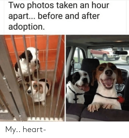 Adoption: Two photos taken an hour  apart... before and after  adoption My.. heart-