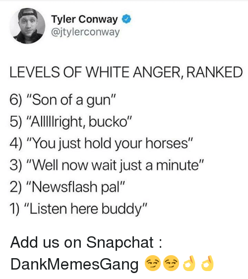 "Conway, Horses, and Memes: Tyler Conway  @jtylerconway  LEVELS OF WHITE ANGER, RANKED  6) ""Son of a gun""  5) ""Allllright, bucko""  4) ""You just hold your horses""  3) ""Well now wait just a minute""  2) ""Newsflash pal'  1) ""Listen here buddy"" Add us on Snapchat : DankMemesGang 😏😏👌👌"
