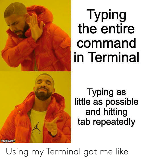 Got, Com, and Terminal: Typing  the entire  command  in Terminal  Typing as  little as possible  and hitting  tab repeatedly  imgflip.com Using my Terminal got me like
