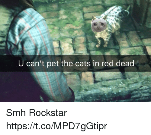 Cats, Smh, and Red Dead: U can't pet the cats in red dead Smh Rockstar https://t.co/MPD7gGtipr