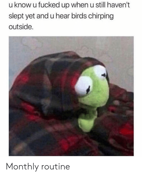Monthly: u know u fucked up when u still haven't  slept yet and u hear birds chirping  outside. Monthly routine