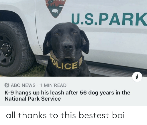 the national: U.S.PARK  OLICE  ABC NEWS 1 MIN READ  K-9 hangs up his leash after 56 dog years in the  National Park Service all thanks to this bestest boi