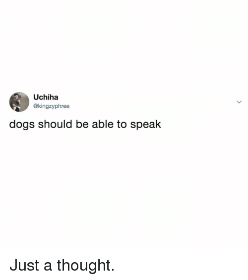 Dogs, Relatable, and Thought: Uchiha  @kingzyphree  dogs should be able to speak Just a thought.