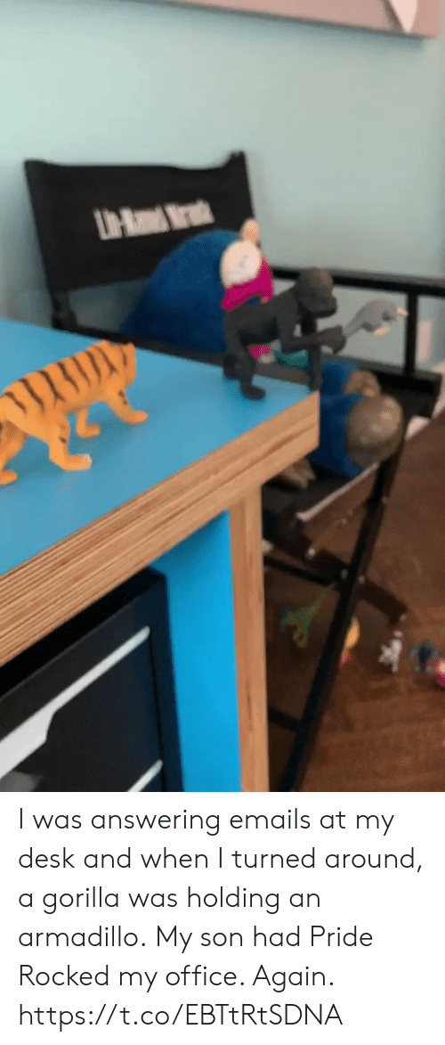 Emails: UH-Ra Mr I was answering emails at my desk and when I turned around, a gorilla was holding an armadillo. My son had Pride Rocked my office. Again. https://t.co/EBTtRtSDNA
