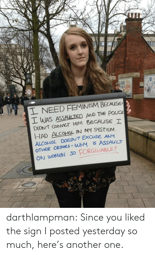 Feminism: un  LOVE yOUR  OLEED5  L NEED FEMINISM BECAUSE  WAS ASSAULTED AND THe poce  DIONT CCT HIM BECAUSE T  HAD ALCOHOL IN M S4STEM  ALCOHOL DOESNT EXCUSE ANY  CRIMES-WH Is ASSAUCT  ON WOMEN SO darthlampman:  Since you liked the sign I posted yesterday so much, here's another one.