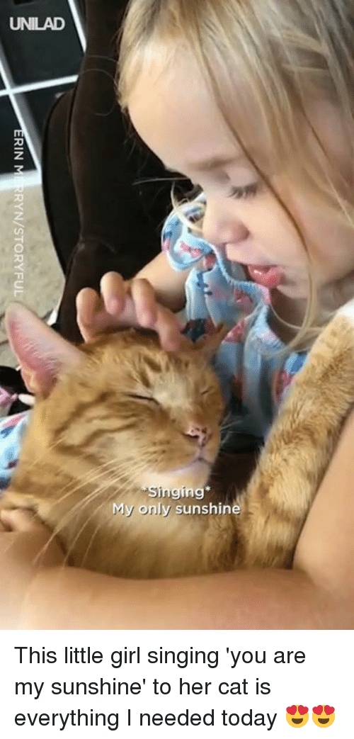 Dank, Singing, and Girl: UNILAD  My only sunshin This little girl singing 'you are my sunshine' to her cat is everything I needed today 😍😍