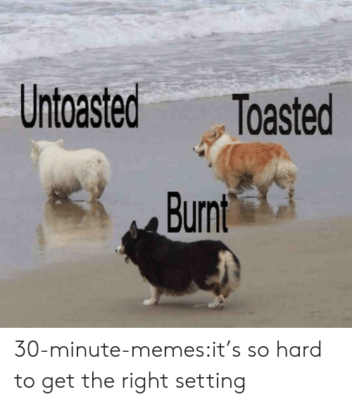 its so hard: Untoasted Toasted 30-minute-memes:it's so hard to get the right setting