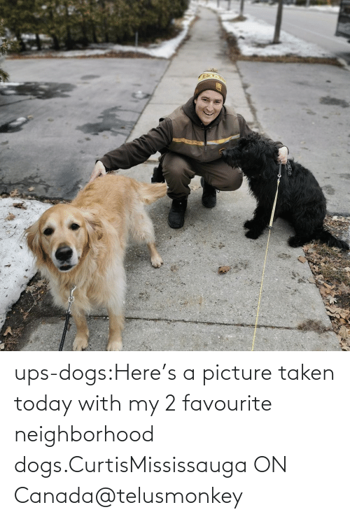 Taken: ups-dogs:Here's a picture taken today with my 2 favourite neighborhood dogs.CurtisMississauga ON Canada@telusmonkey