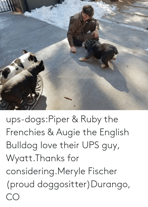 for: ups-dogs:Piper & Ruby the Frenchies & Augie the English Bulldog love their UPS guy, Wyatt.Thanks for considering.Meryle Fischer (proud doggositter)Durango, CO