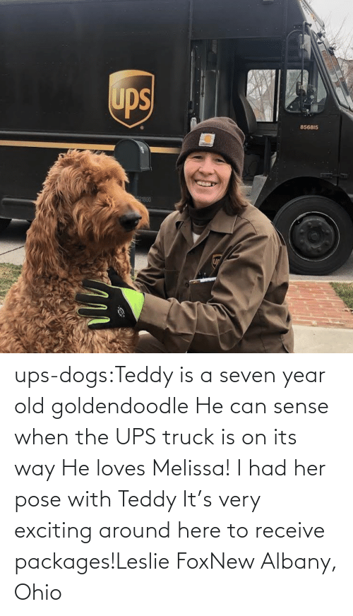 When: ups-dogs:Teddy is a seven year old goldendoodle He can sense when the UPS truck is on its way He loves Melissa! I had her pose with Teddy It's very exciting around here to receive packages!Leslie FoxNew Albany, Ohio
