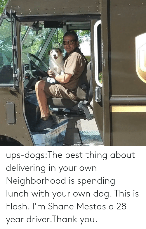 Target: ups-dogs:The best thing about delivering in your own Neighborhood is spending lunch with your own dog. This is Flash. I'm Shane Mestas a 28 year driver.Thank you.
