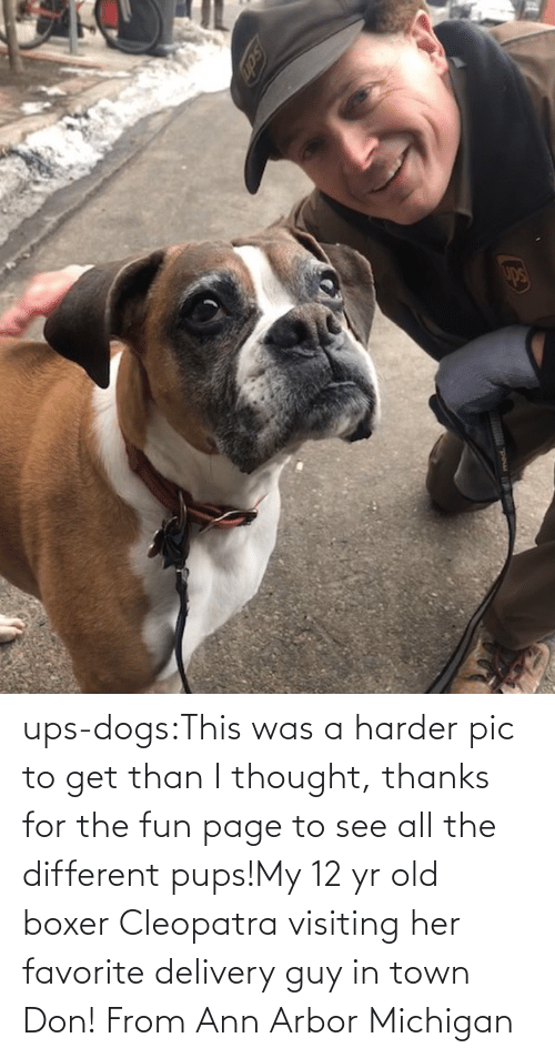 All The: ups-dogs:This was a harder pic to get than I thought, thanks for the fun page to see all the different pups!My 12 yr old boxer Cleopatra visiting her favorite delivery guy in town Don! From Ann Arbor Michigan