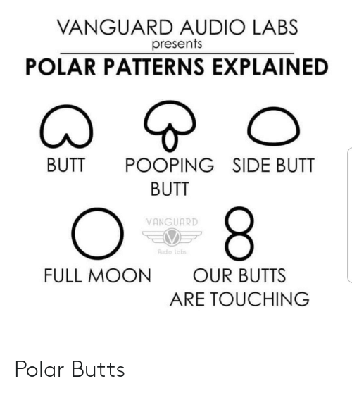 Butt, Moon, and Audio: VANGUARD AUDIO LABS  presents  POLAR PATTERNS EXPLAINED  BUTT  POOPING SIDE BUTT  BUTT  8  VANGUARD  Audio Labs  FULL MOON  OUR BUTTS  ARE TOUCHING Polar Butts