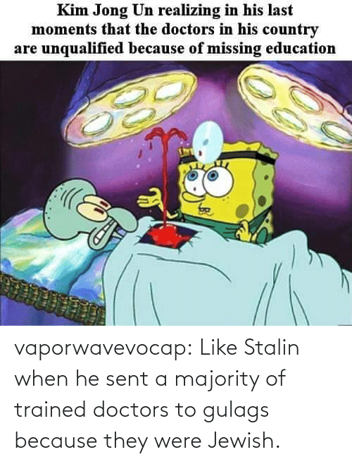 When He: vaporwavevocap:  Like Stalin when he sent a majority of trained doctors to gulags because they were Jewish.