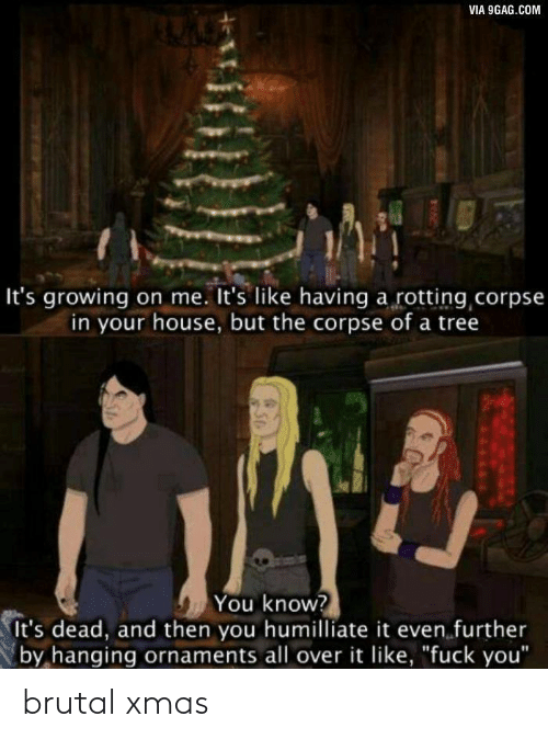 "9gag, Fuck You, and Fuck: VIA 9GAG.COM  It's growing on me. It's like having a rotting corpse  in your house, but the corpse of a tree  You know?  It's dead, and then you humilliate it even further  by hanging ornaments all over it like, ""fuck you"" brutal xmas"