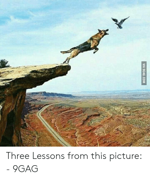 Jumping Off A Cliff Meme: VIA 9GAG.COM Three Lessons from this picture: - 9GAG