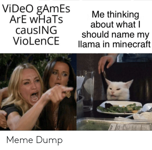 Meme, Minecraft, and Video Games: ViDeO gAmEs  ArE wHaTs  causING  VioLenCE  Me thinking  about what I  should name my  llama in minecraft Meme Dump
