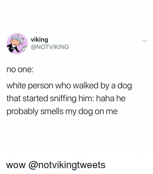 Memes, Wow, and White: viking  @NOTVIKING  no one:  white person who walked by a dog  that started sniffing him: haha he  probably smells my dog on me wow @notvikingtweets
