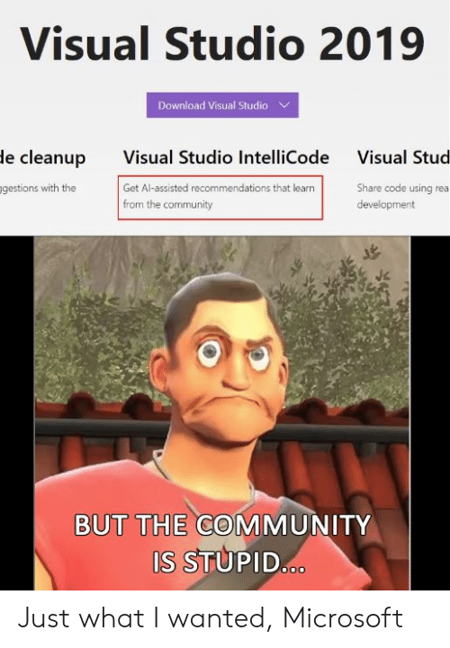 Community, Microsoft, and Visual Studio: Visual Studio 2019  Download Visual Studio  Visual Studio IntelliCode  Get Al-assisted recommendations that learn  from the community  le cleanup  Visual Stud  gestions with the  Share code using rea  development  BUT THE COMMUNITY  S STUPID Just what I wanted, Microsoft