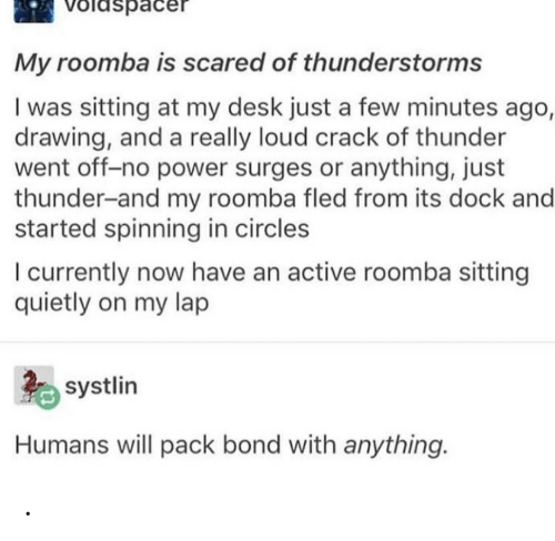 Roomba, Desk, and Power: Voldspacer  My roomba is scared of thunderstorms  I was sitting at my desk just a few minutes ago,  drawing, and a really loud crack of thunder  went off-no power surges or anything, just  thunder-and my roomba fled from its dock and  started spinning in circles  I currently now have an active roomba sitting  quietly on my lap  systlin  Humans will pack bond with anything. .