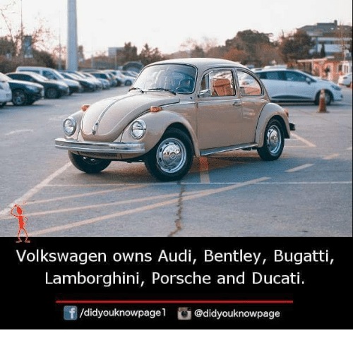 Memes, Porsche, and Lamborghini: Volkswagen owns Audi, Bentley, Bugatti,  Lamborghini, Porsche and Ducati.  /didyouknowpagel @didyouknowpage