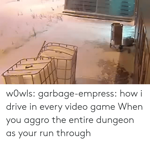 Run, Target, and Tumblr: w0wls:  garbage-empress: how i drive in every video game  When you aggro the entire dungeon as your run through