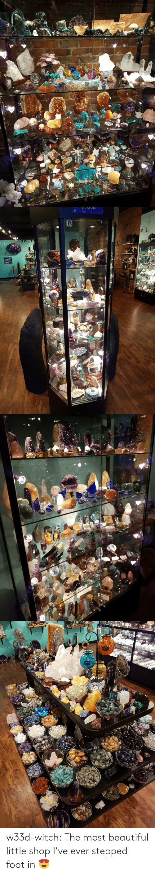 shop: w33d-witch: The most beautiful little shop I've ever stepped foot in 😍