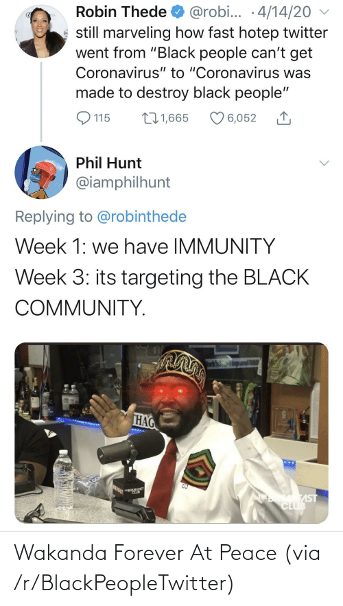 at-peace: Wakanda Forever At Peace (via /r/BlackPeopleTwitter)